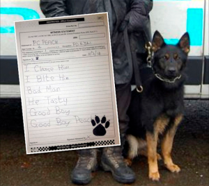 U.K. Police Dog Files Hilarious Witness Statement For Court Case
