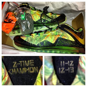 LeBron James' New Sneakers Declare Him As '2-Time Champion'